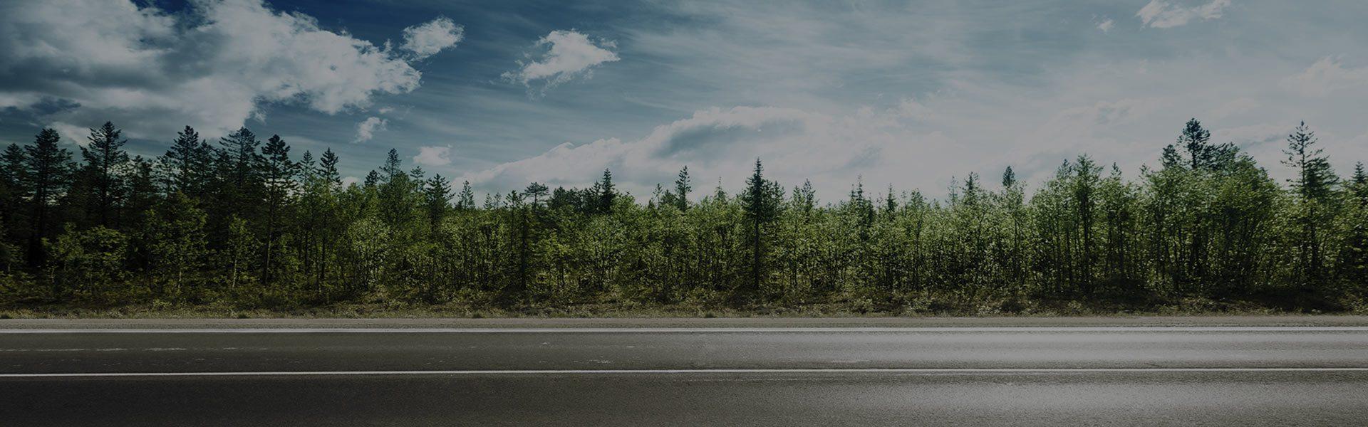 ralf-ecotyre-llantas-nuevas-baratas-y-ecologicas-en-mexico-camino